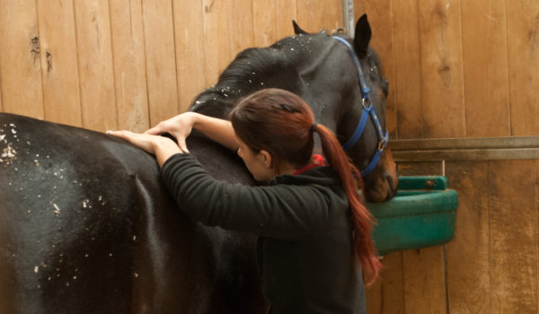 How Fascia Impacts your Horse's Movement