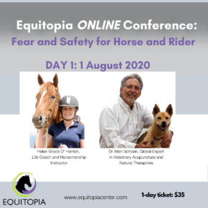 fear and safety conference day 1 equitopia