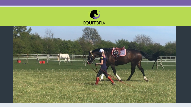 Lunging for Relaxation, Balance and Suppleness