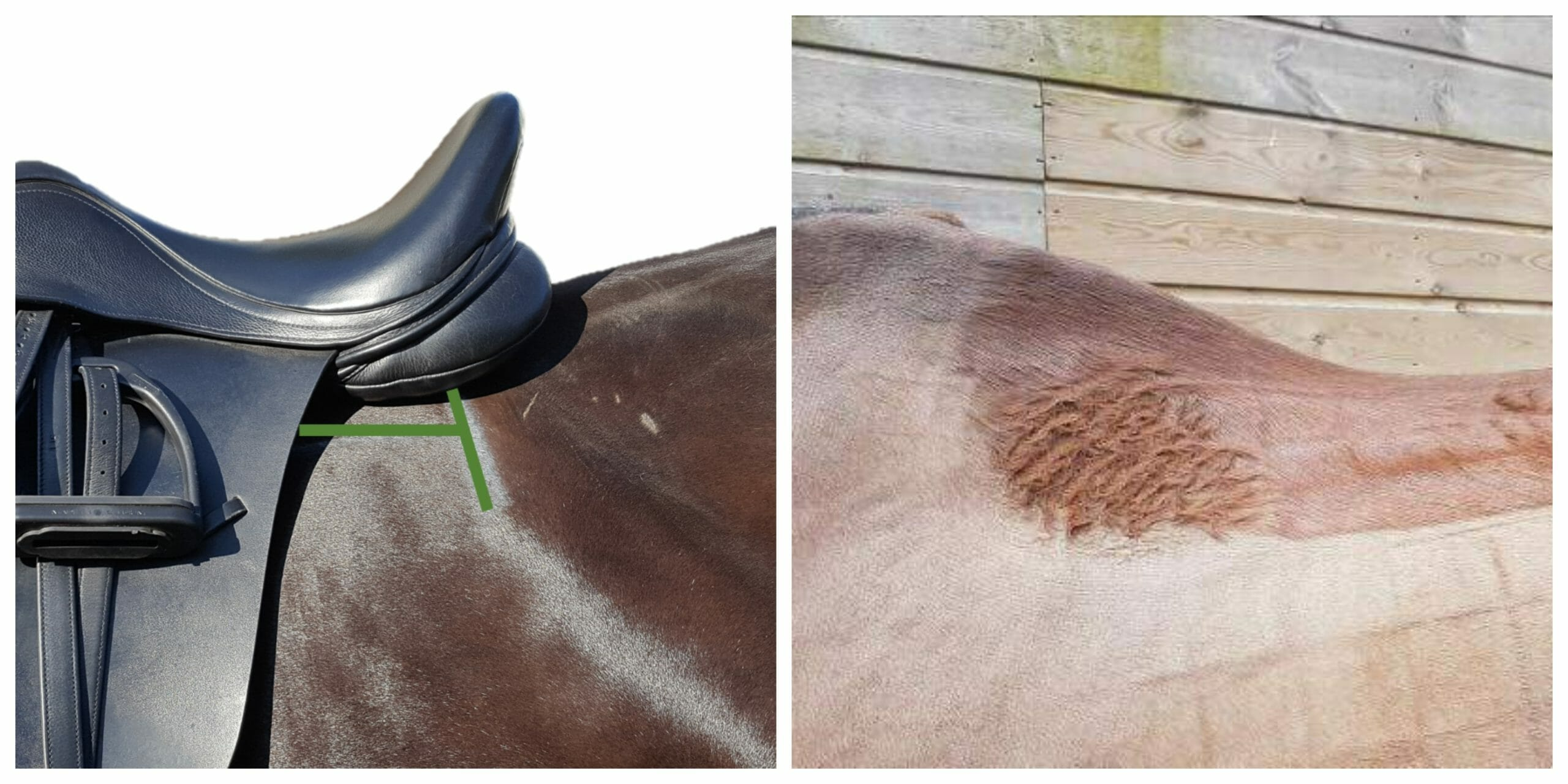 Saddle fit versus Saddle Fashion
