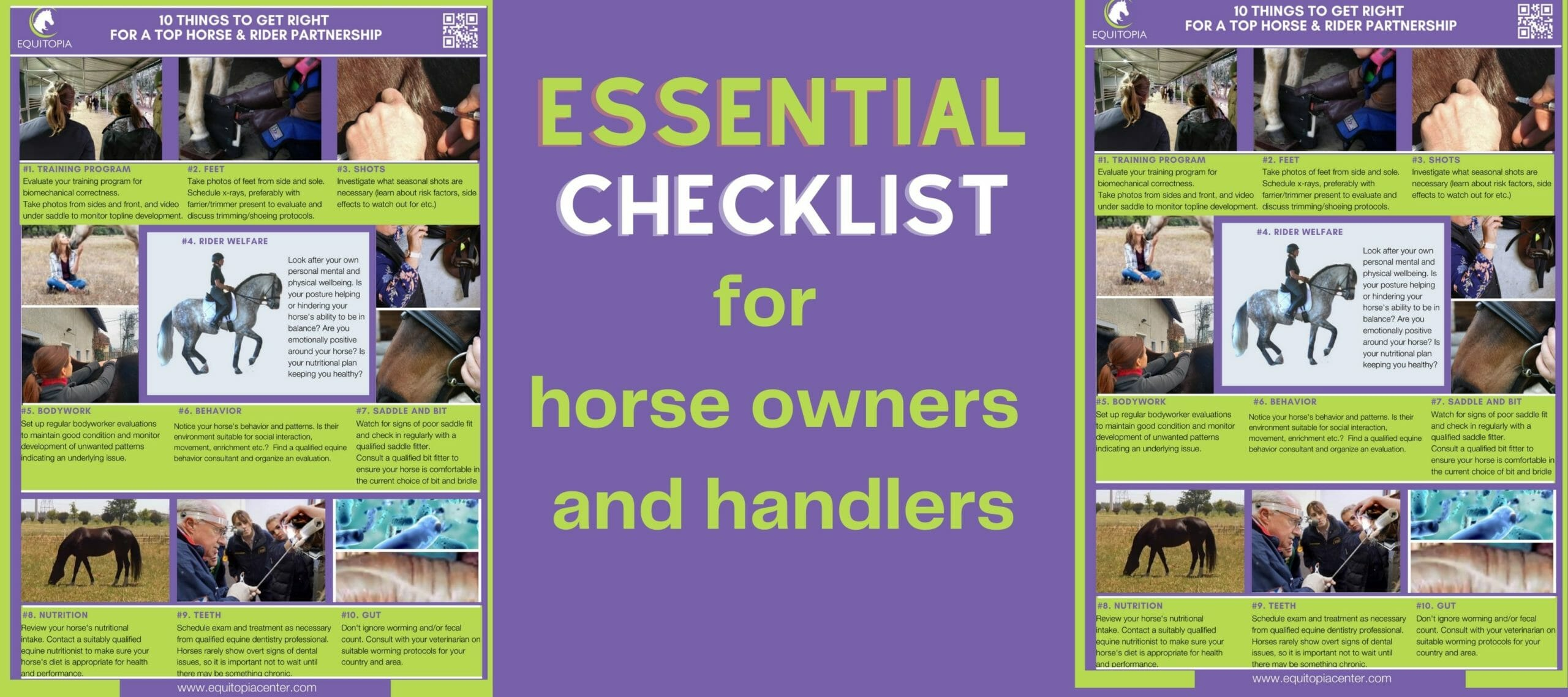Essential checklist for horse owners